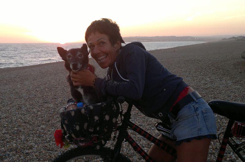 Iggy_sprog_bike_sunset